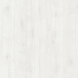 Дуб Шелковый блеск