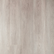 Дуб пыльно-серый