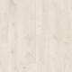 Дуб Вирджиния белый